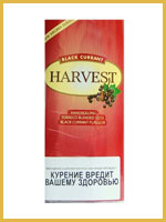 Harvest Black Currant